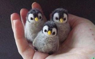 Войлочные игрушки своими руками: мастер класс с фото