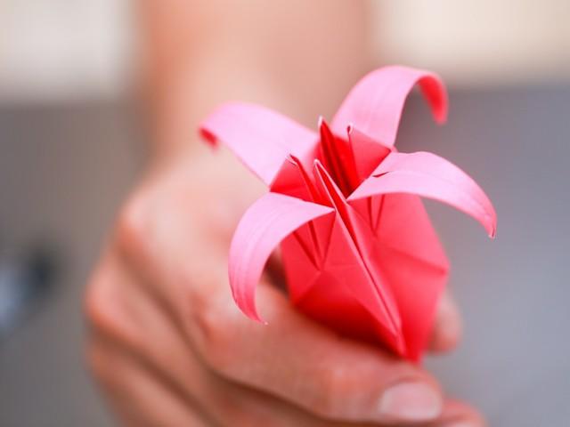 cхемы модульного оригами: кошка, лилия, вазы и цветы