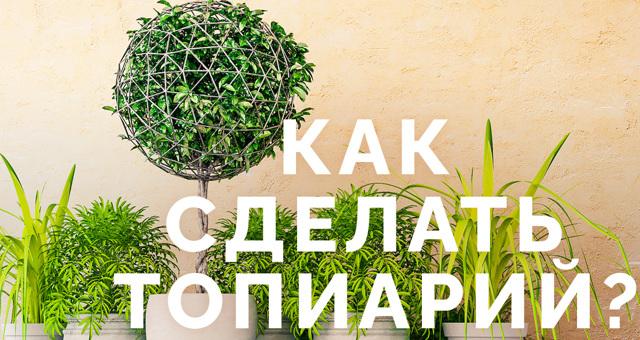 Топиарий (дерево счастья): мастер класс с фото