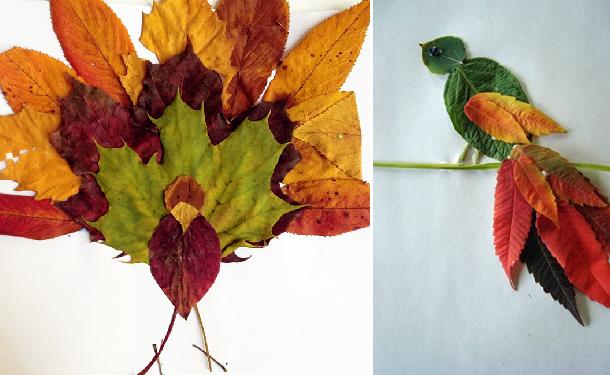 Композиции из природного материала: лучшие мастер-классы с пошаговыми фото