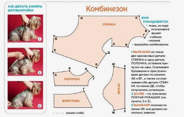 Одежда для чихуахуа своими руками: выкройки и мастер класс с фото
