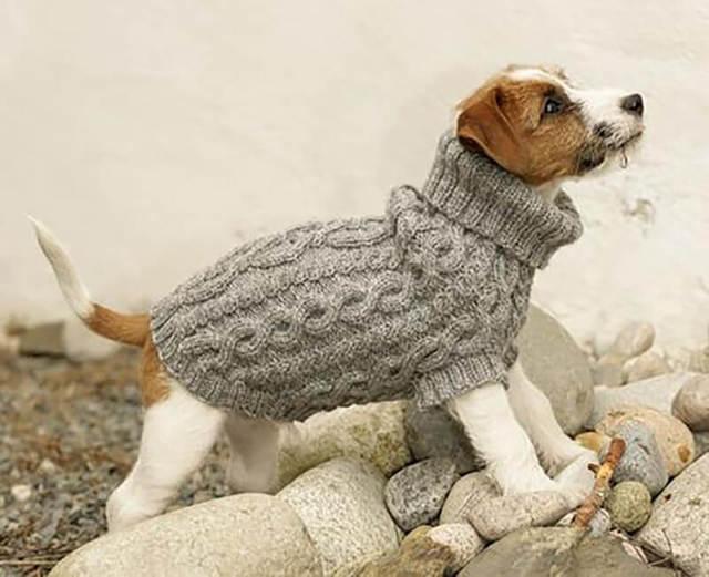 Свитер для собак: мастер класс с фото